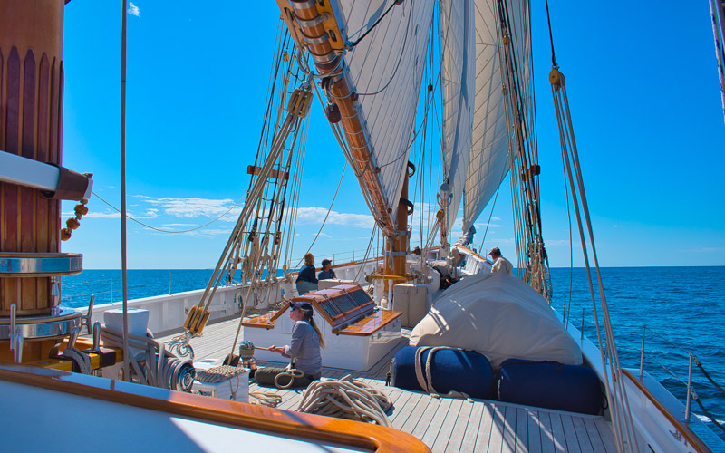 7 Small Profitable Marine Business ideas You can Start