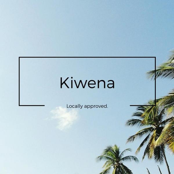 Kiwena Making surf travel easier and more sustainable
