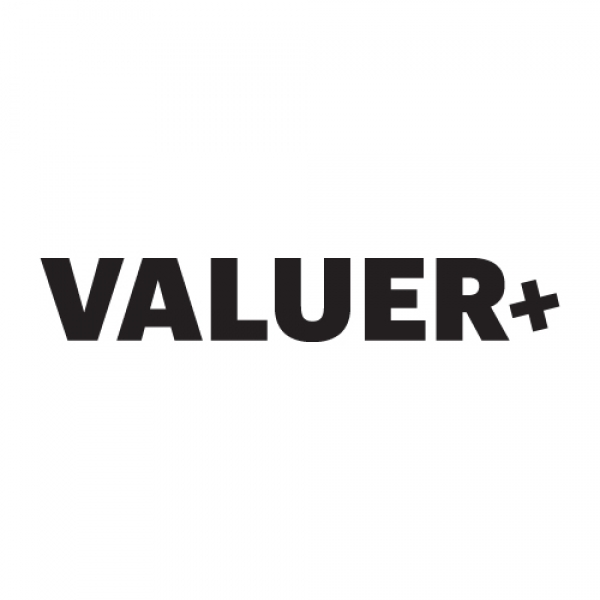 Valuer.ai