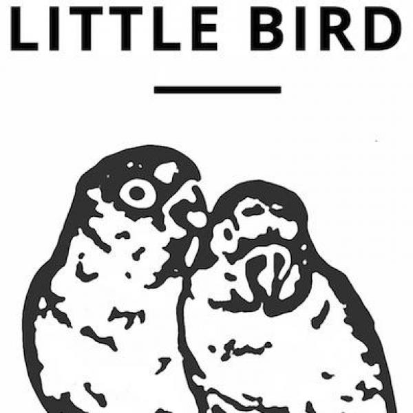 Little Bird Essential, unbiased guidance for selecting your ideal engagement ring or diamond.