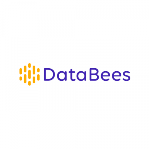 DataBees Custom Lead Research at Scale