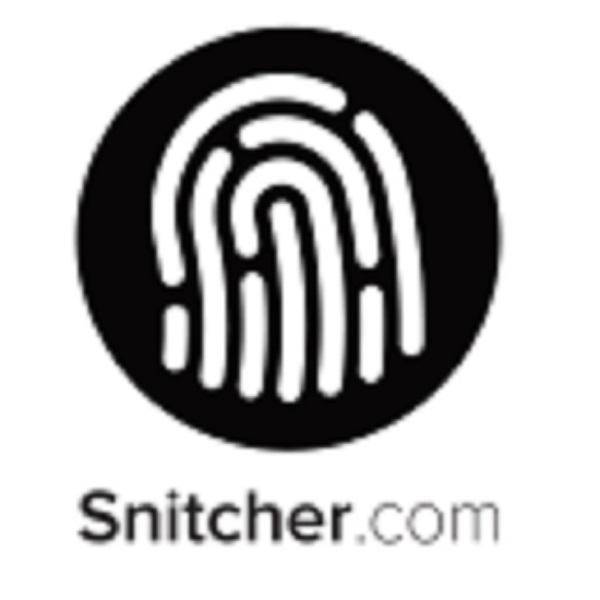 Snitcher See which companies are visiting your website