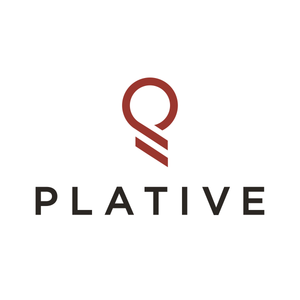 Plative Introducing: The Future of Professional Services